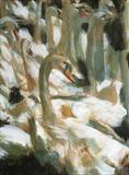 Swans by chick mcgeehan, Painting, Acrylic on paper
